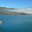 Tender Boats at Akaroa by Ray by Marcia Luly