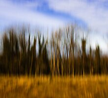 Impressionistic Trees by Kofoed