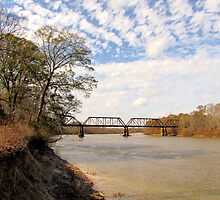 railroad over the Altamaha! by tomcat2170