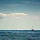 Sail  by Brandy Ford