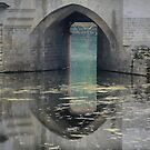 Reflecting On Chenonceau ( 3 ) by Larry Davis