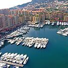 Monaco Marina by Tom Gomez