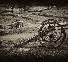 The Silent Guns of Gettysburg by ©  Paul W. Faust