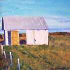 Prairie shed by Dan Wilcox
