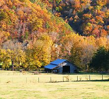 Barn and Fall Colors at Boxley Valley, Arkansas 2011 by DonCondley