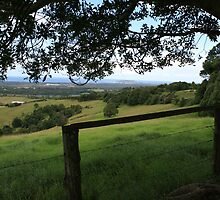 From The Hills Near Byron Bay by aussiebushstick