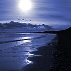 Druridge Bay by David Pringle