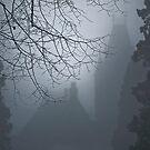 Magic behind the veil by Maria Ismanah Schulze-Vorberg