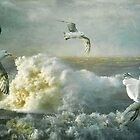 Herring Gulls on The Mersey by Tarrby