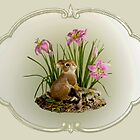 Bunny among the Lillies by Rupert Mcgrath