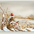 Cardinals and Fence in Winter  by Rupert Mcgrath