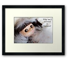 Why Am I Covered in Feathers? Framed Print
