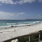 Friendly Beaches (Tasmania) by gaylene