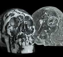 Crystal Skulls, Zebra Jasper and Clear Quartz by LorrieBee