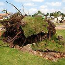 2011 08 21 Goderich, Ont. Tornado One Week Later Aftermath 6690 by Daniela Weil