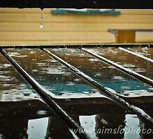 Rain on Deck by -aimslo-