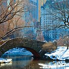 Central Park, NYC- Gapstow Bridge by Nathan Seiler