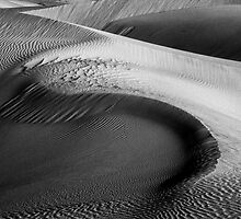 Dunes in morning light by ©  Paul W. Faust