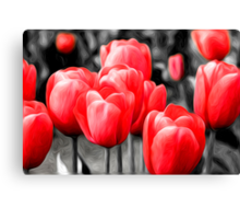 Abstract Pink Tulips Oil Painting Canvas Print