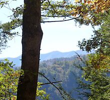 Great Smoky Mountains of TN by JeffeeArt4u