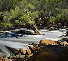 Bells Rapids #2 by vilaro Images