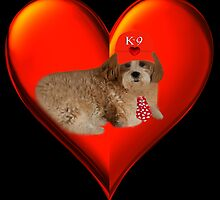 "♪ ♫ ✿♥‿♥✿ K-9 LUV♥~ ""WON'T U LET ME BE YOUR LOVIN TEDDY BEAR ?"" VALENTINE ♪ ♫ ✿♥‿♥✿    by ╰⊰✿ℒᵒᶹᵉ Bonita✿⊱╮ Lalonde✿⊱╮"