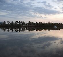 A New Day ~ Johnstone River, Innisfail, FNQ. by Kerryn Madsen-Pietsch