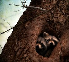 Hi There by James L. Brown