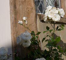 Tudor Romance by Circe Lucas