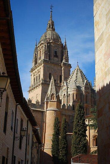 Salamanca Cathedral by luissantos84