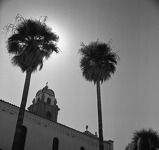 Palms and Monastery by James2001