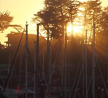 Hazy Harbor Sunset by ChrisHarrell