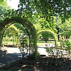 Arches in the Park, Lithgow by ©Josephine Caruana