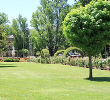 Relax in the Park, Queen Elizabeth Park Lithgow by ©Josephine Caruana