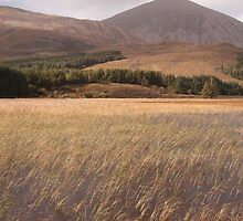 Loch Cill Chriosd, Beinn Dearg Bheag & Beinn na Caillich by Christopher Cullen