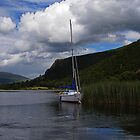 Boat on Derwentwater by David Pringle