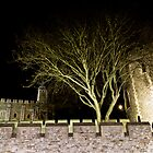 Tower Of London night view by DavidHornchurch