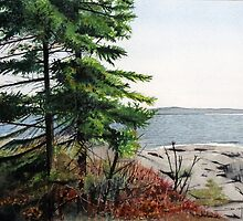 Boswell's Point #1 by Douglas Hunt