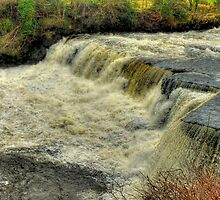 Middle Falls Aysgarth - HDR by Colin J Williams Photography