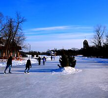 Skating on the Pond by Larry Trupp