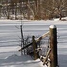 Winter Scene by Jean-Pierre Ducondi