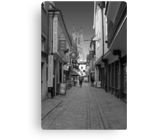 This way to the Cathedral  Canvas Print