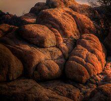 Watcher-Color by Bob Larson