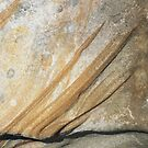 Sandstone Patterns #2 by Roz McQuillan