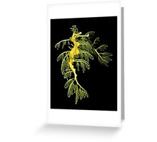 The Leafy Sea Dragon Greeting Card