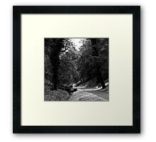 To sit, or walk across ... Framed Print