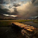 The Storm by Vikram Franklin