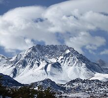 Raw And Rugged Sierras by marilyn diaz