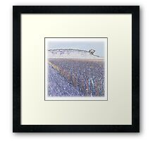 Fields of gold Kearney as Vincent may have captured it Framed Print