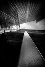 Glass Steel Wood Sky by Bob Larson